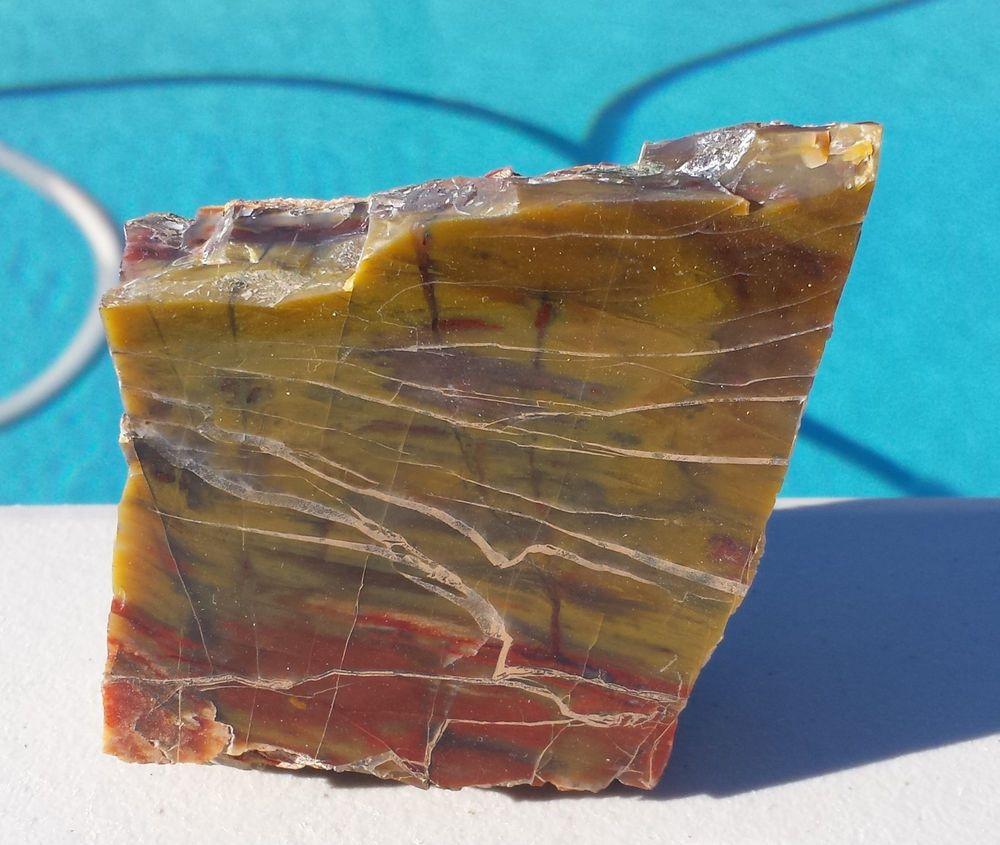 Petrified Wood Section from Arizona Polished on 1 sides (PW-MFR302)
