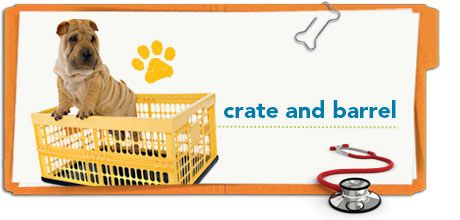 Tips for crate training a new puppy, from Petplan pet