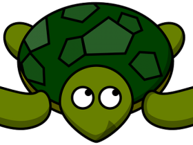 Sea Turtle Clipart Png Image With Transparent Background Png