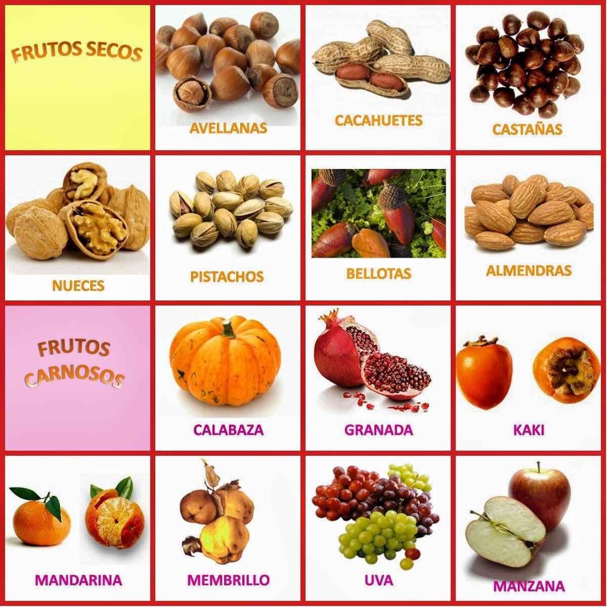 collage.jpg (1200×1200) | Frutos del otoño, Otoño, Actividades de otoño