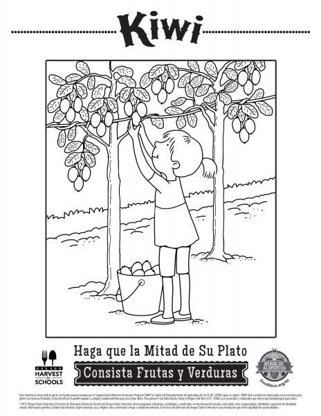 coloring pages healthy coloring sheets for kids with fruit in spanish food hero