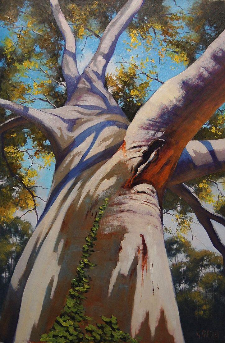 Australian Gum Tree Portrait By Artsaus Landscape Paintings