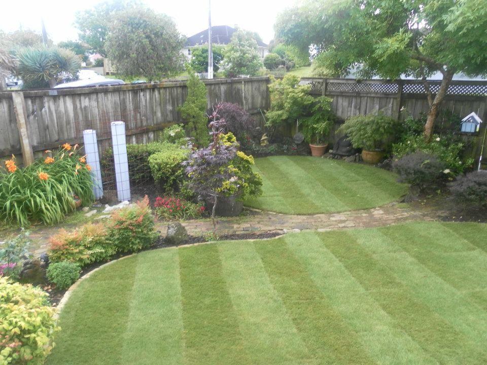 Steve's garden in New Zealand Lawn, garden, Home