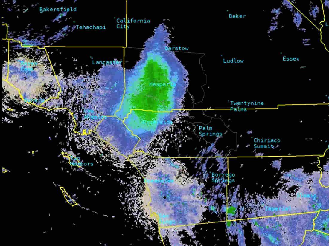 Ladybug Swarm Shows Up On National Weather Service Radar