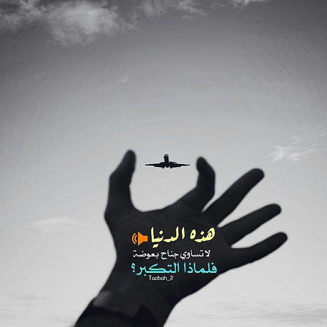 خدمة التوبة إلى الله On Instagram هذه الدنيا لا تساوي جناح بعوضة فلماذا التكبر Arabic Quotes Quotes Okay Gesture