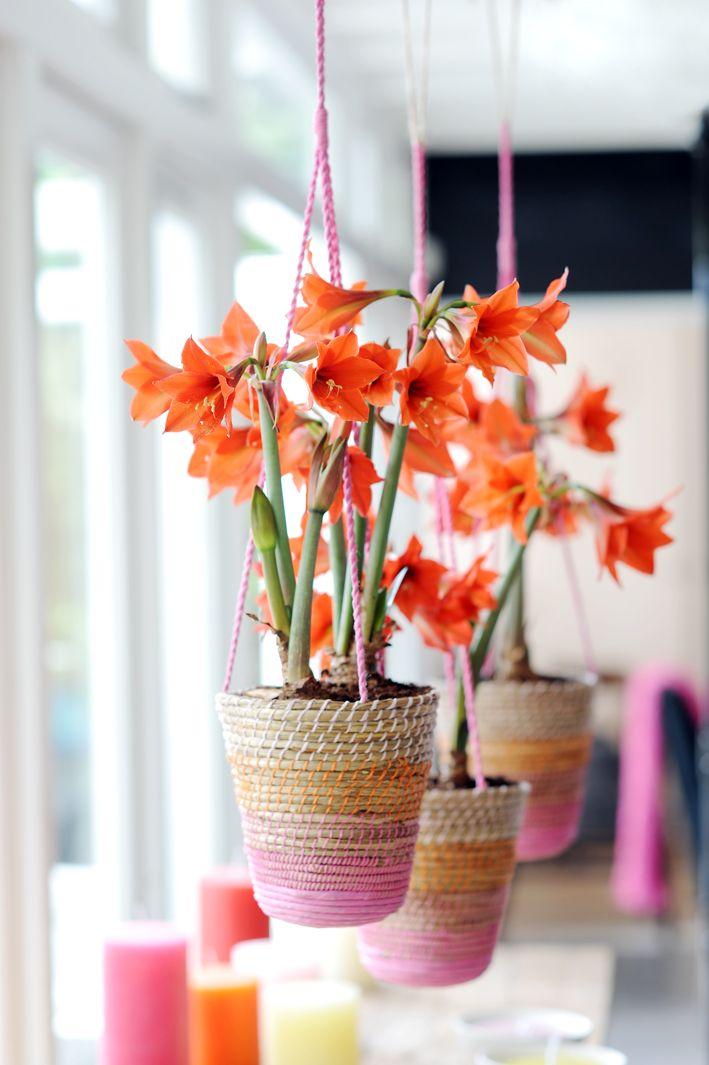 Schöne Hängende Pflanztöpfe Selber Machen L Deko L Blumentopf L