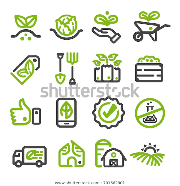 Organic Vegetable Thin Line Icon Stock Vector