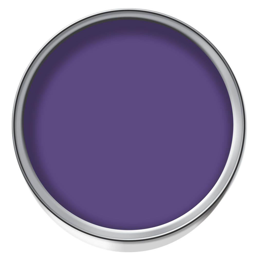 Paint Tester dulux feature wall matt emulsion paint tester pot purple pout 50ml