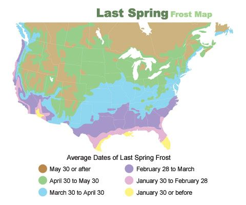 2012 Last Frost