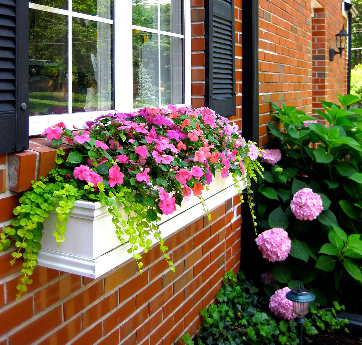 How to Hang Window Boxes the Right Way Window box