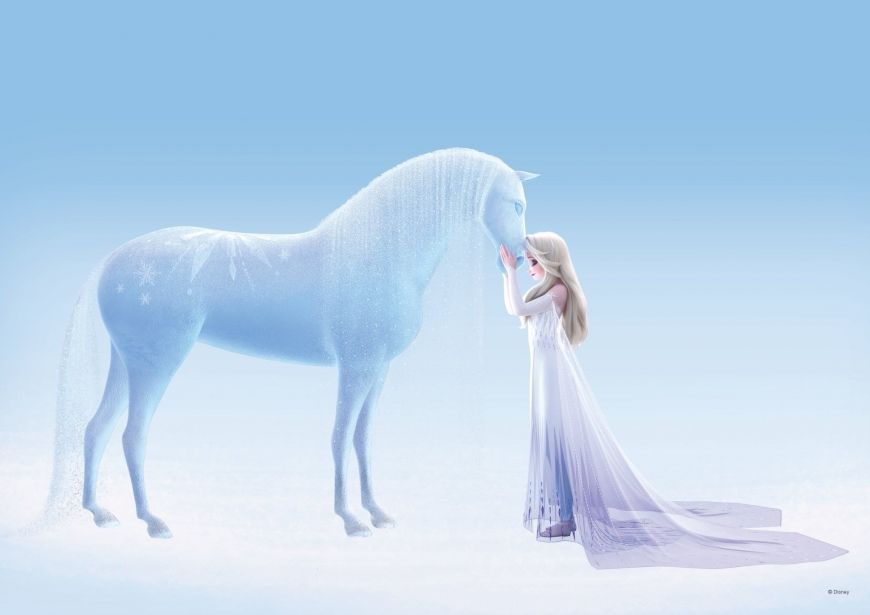 Frozen 2 Ice Nokk And Elsa In White Dress Disney Princess Frozen Disney Frozen Elsa Frozen Disney Movie