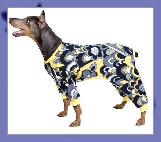 patrones para ropa de perros gratis | Ropa para perros | Pinterest ...