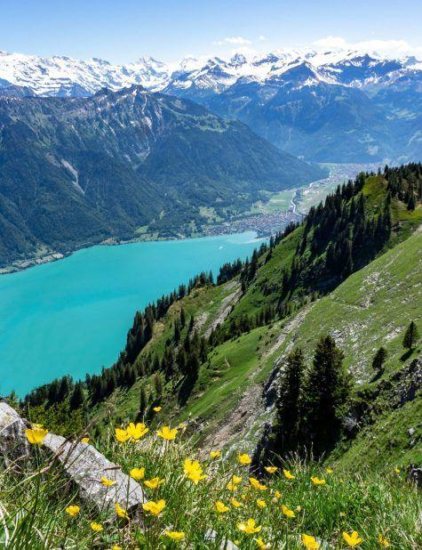 Dsc01500bis Voyage Suisse Interlaken Roadtrip