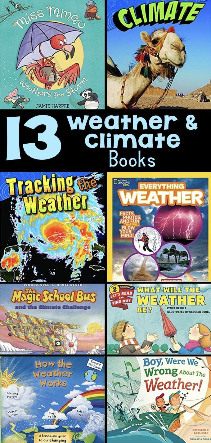 Books about Weather and Climate make great classroom activities and resources for third graders.  T