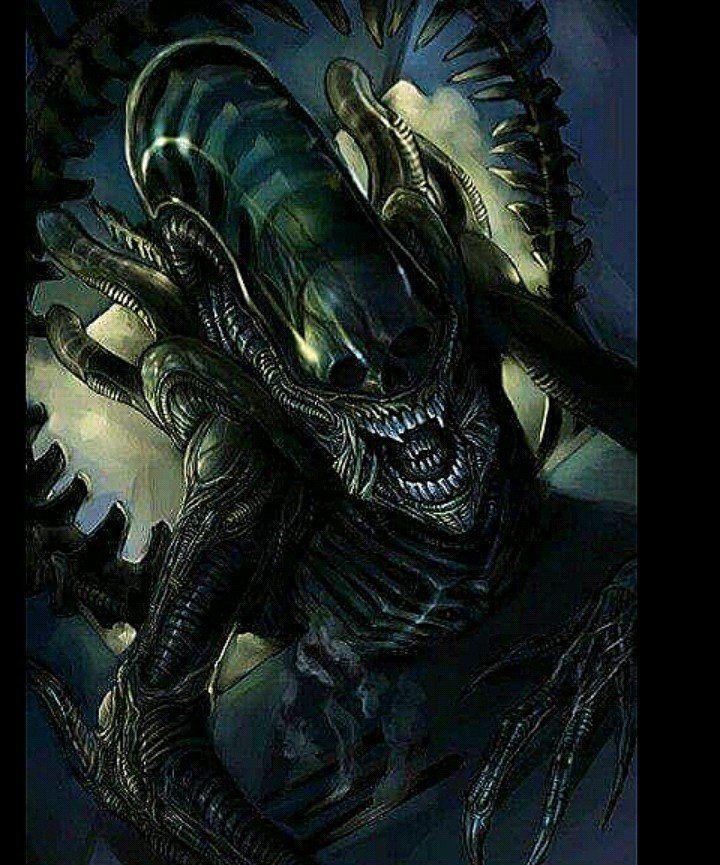 Predator Forum Predator alien, Scary alien, Alien vs
