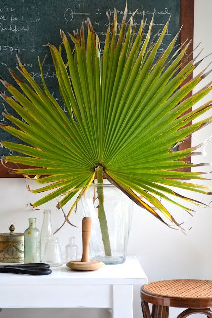 Love The Palmetto Fan Vintage Furniture House New Homes
