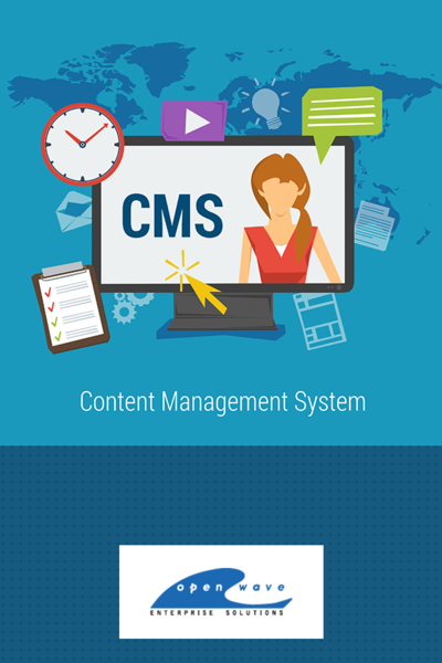 Create The Cms Website For Your Business To Reduce The Website Maintenance Cost Hire O Management Development Website Development Company Website Development