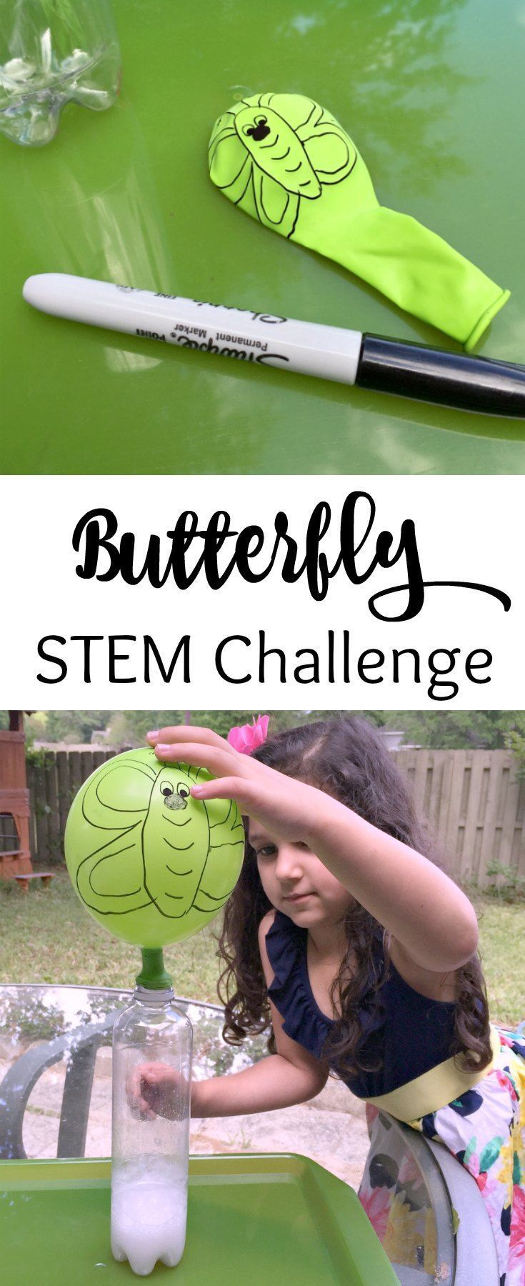 caterpillar to butterfly science activity with balloon science