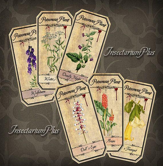 6 Poisonous Plant Tags - Vintage Botanical Apothecary Labels