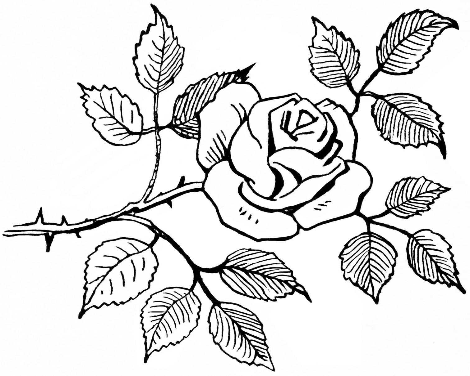 Old Design Shop Free Digital Image Black And White Rose Clipart
