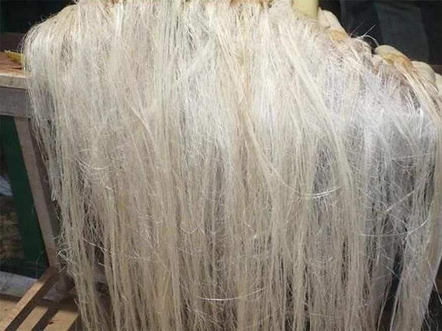 Flax Properties Llc