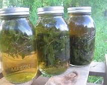 Herbal Infusions Infusions are medicinal beverages made by steeping the herbs in hot water until their useful qualities are extracted. To make an infusion, bring a pint of water to a full rolling boil and remove from the heat. Immerse 1 ounce (about 2 cups) of the dried herb in the water and cover tightly. Let the infusion steep for 10-15 mins.