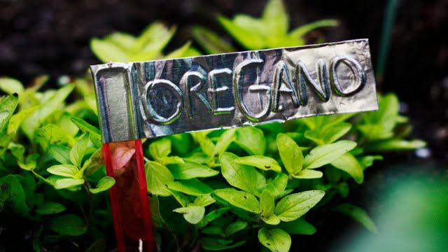 Make garden markers with Aluminum duct tape, a visually appealing approach with a dirt cheap DIY price from Aunt Peaches, but I came across this at Lifehacker.
