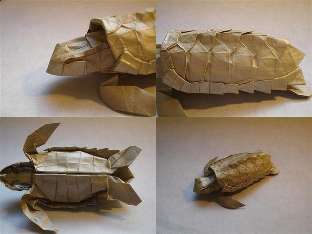 ORIGAMI TURTLE (Marc Vigo) 🐢 - YouTube | 480x640