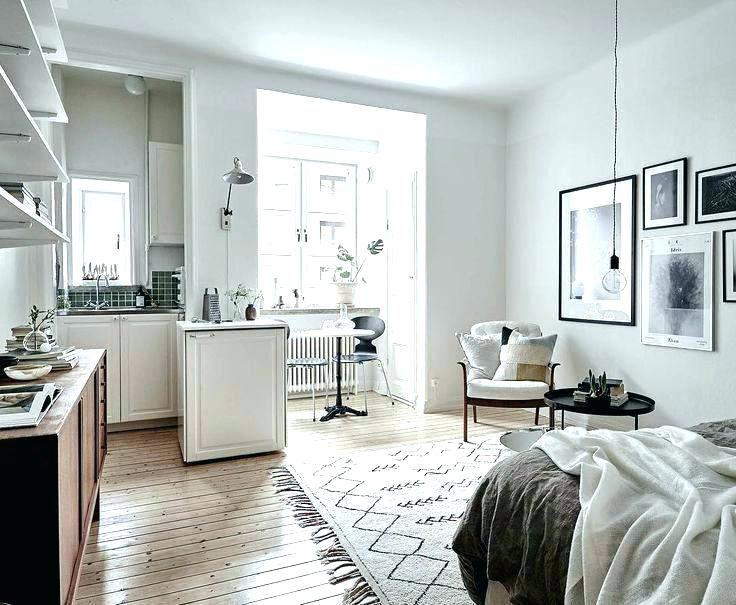 Basement Studio Apartment Ideas Small Basement Studio ...