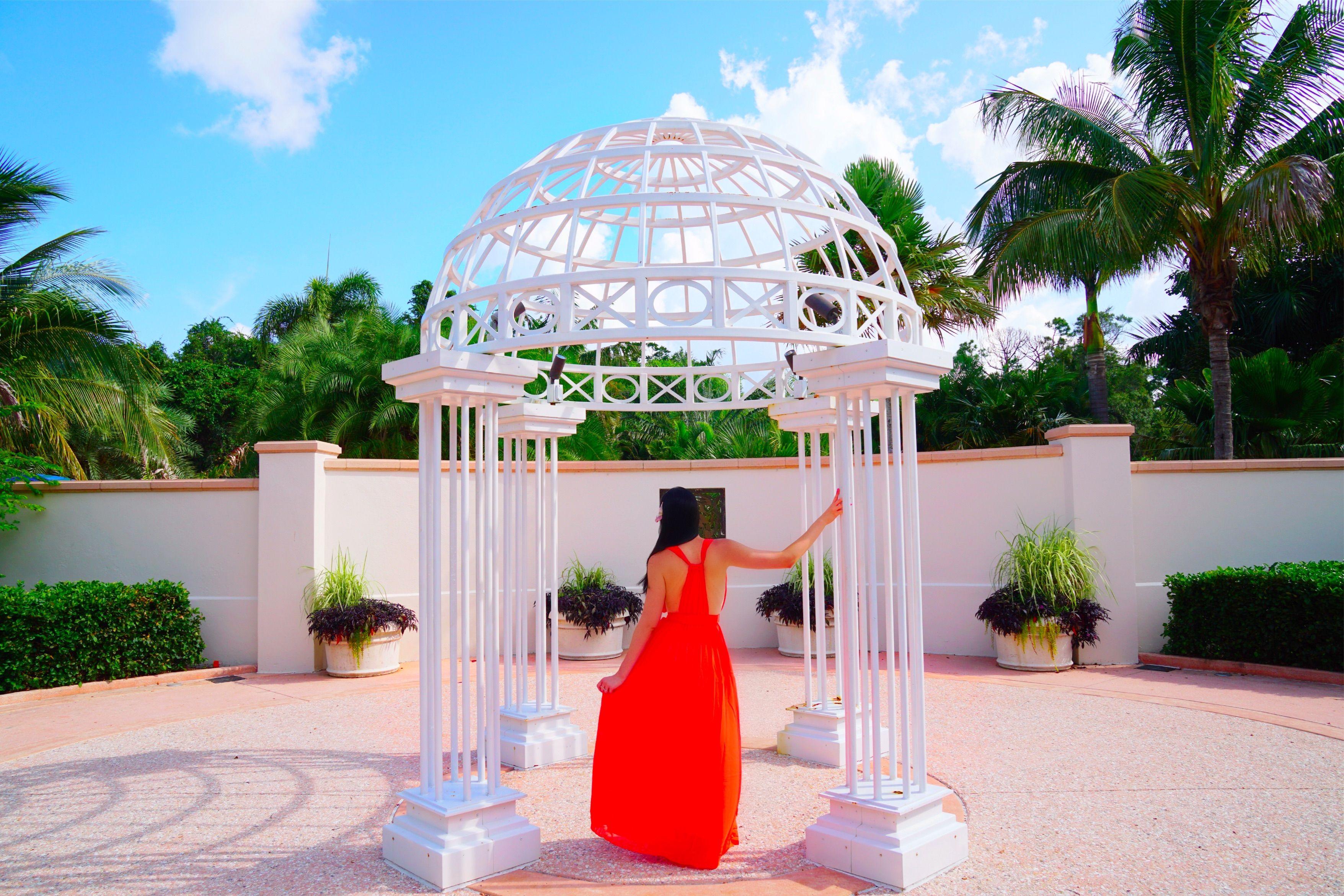 a71fdd57aaef3a6c00216dcc20668fd6 - The Florida Botanical Gardens In Largo