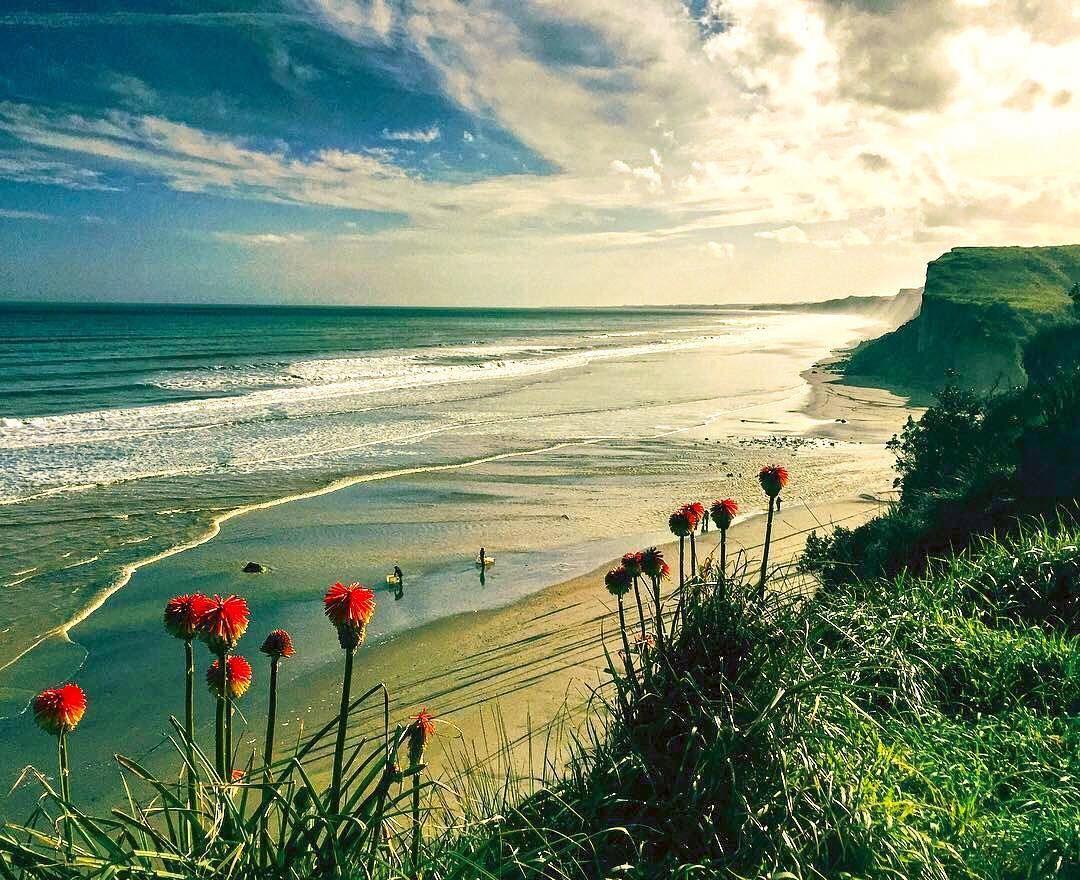 Pin by Проходил Мимо on NZ Beach view, Visit new zealand