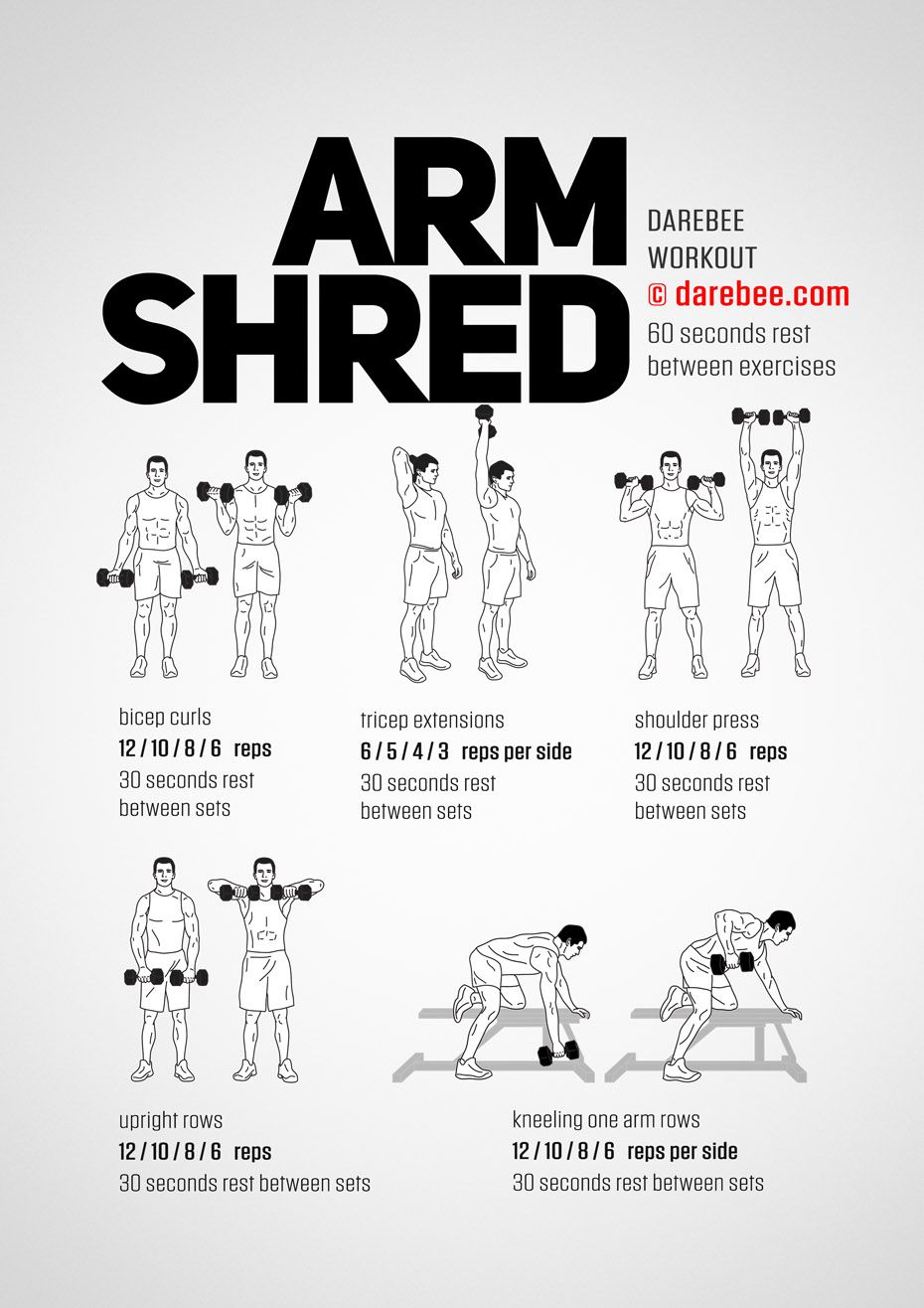 Arm Shred Workout Shred Workout Dumbell Workout Arm Workout