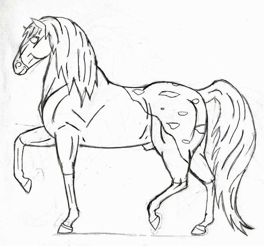 Book Favorite Paint Coloring Pages Splash Horse Snowcap Appaloosa Lineart By Iluvmusic1000 D5k53ztjpg 900840 Donkeystackhorsescoloringdonkeyhorse