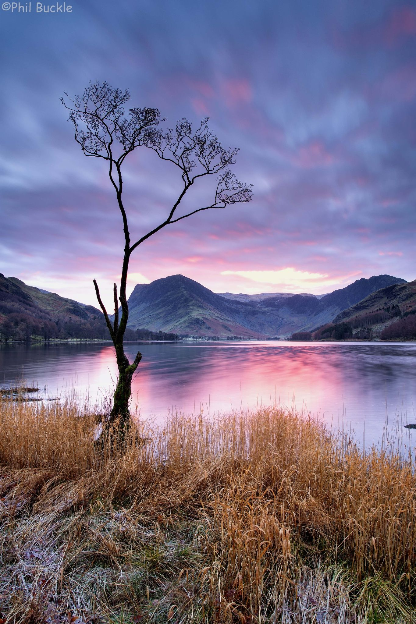 Sunrise at the lone tree on Buttermere | Take my breath away ...