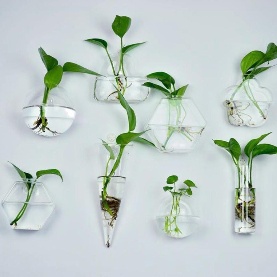 Clear Terrarium Vase Hanging Glass Vase Wall Mounted Plant Holder Bathroom Plants