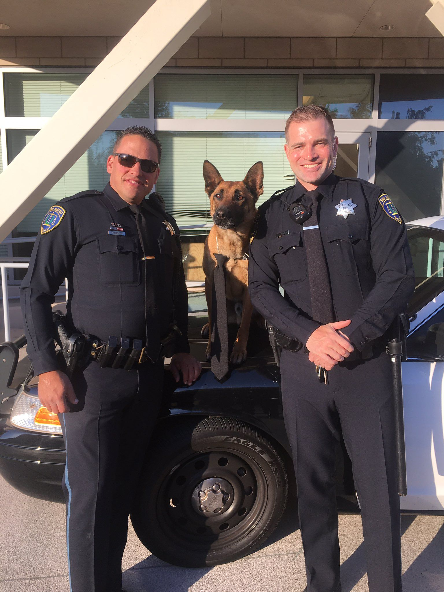 San Mateo Police K9 on | California Law Enforcement | San