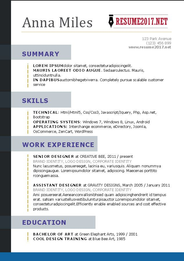 Functional resume template 2017 word