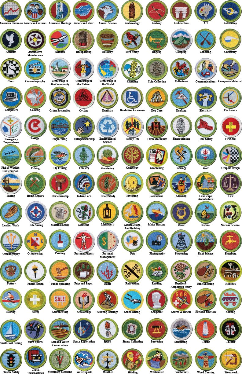Badges ref game pinterest badges eagle scout ceremony and badges ref robcynllc Choice Image