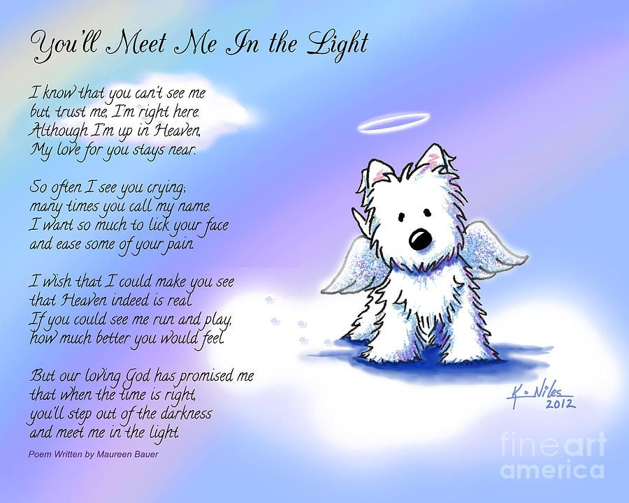 Angel Westie With Poem Canvas Print Canvas Art By Kim