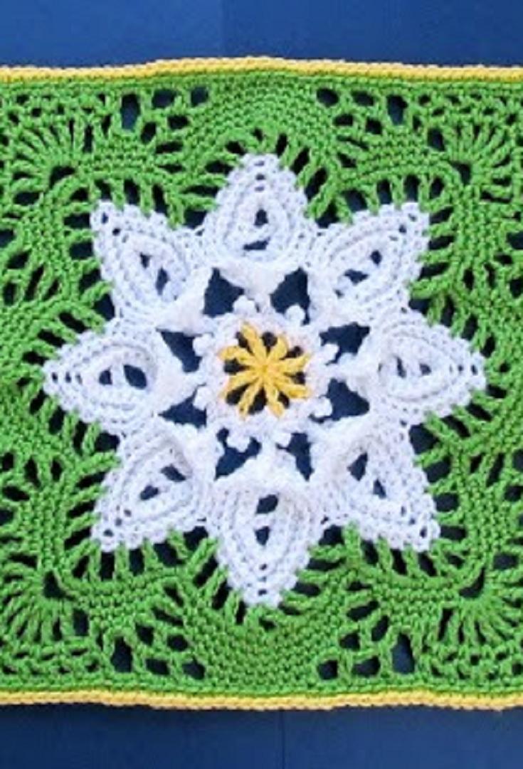 Free pattern daisy flower square free pattern squares and flower free pattern daisy flower square izmirmasajfo Choice Image
