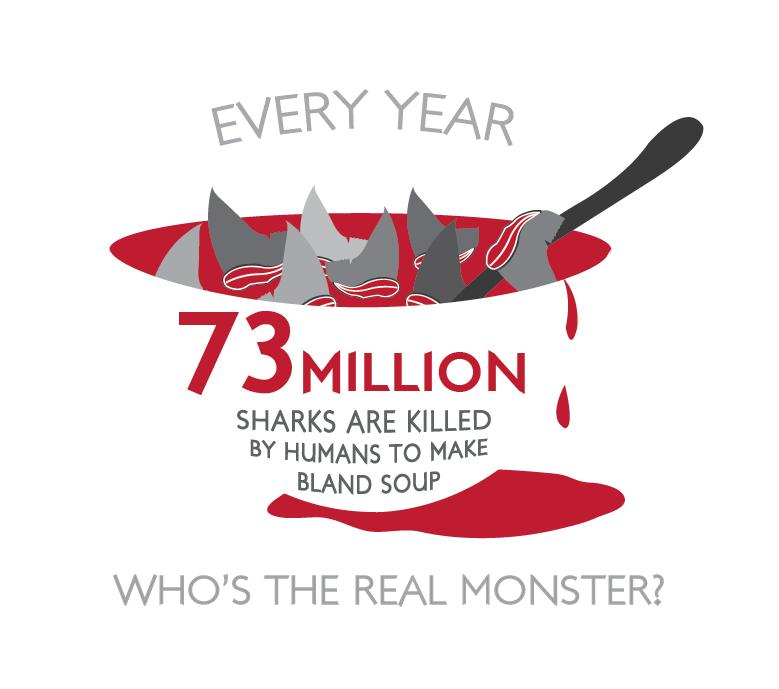 Pin on Ban all shark finning