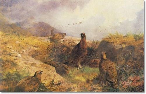 Thorburn, Archibald  - Archibald Thorburn - The Gathering Storm 1894 - Original Size 19x30 Poster