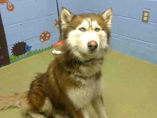 No Longer Listed California A457958 I Am Described As A Female