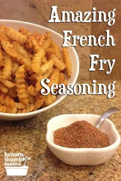 Amazing French Fry Seasoning | Brown Thumb Mama