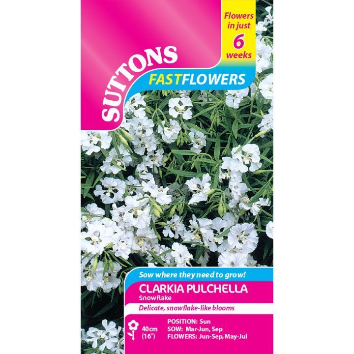 Clarkia Snowflake Seeds - Suttons Seeds and Plants ...
