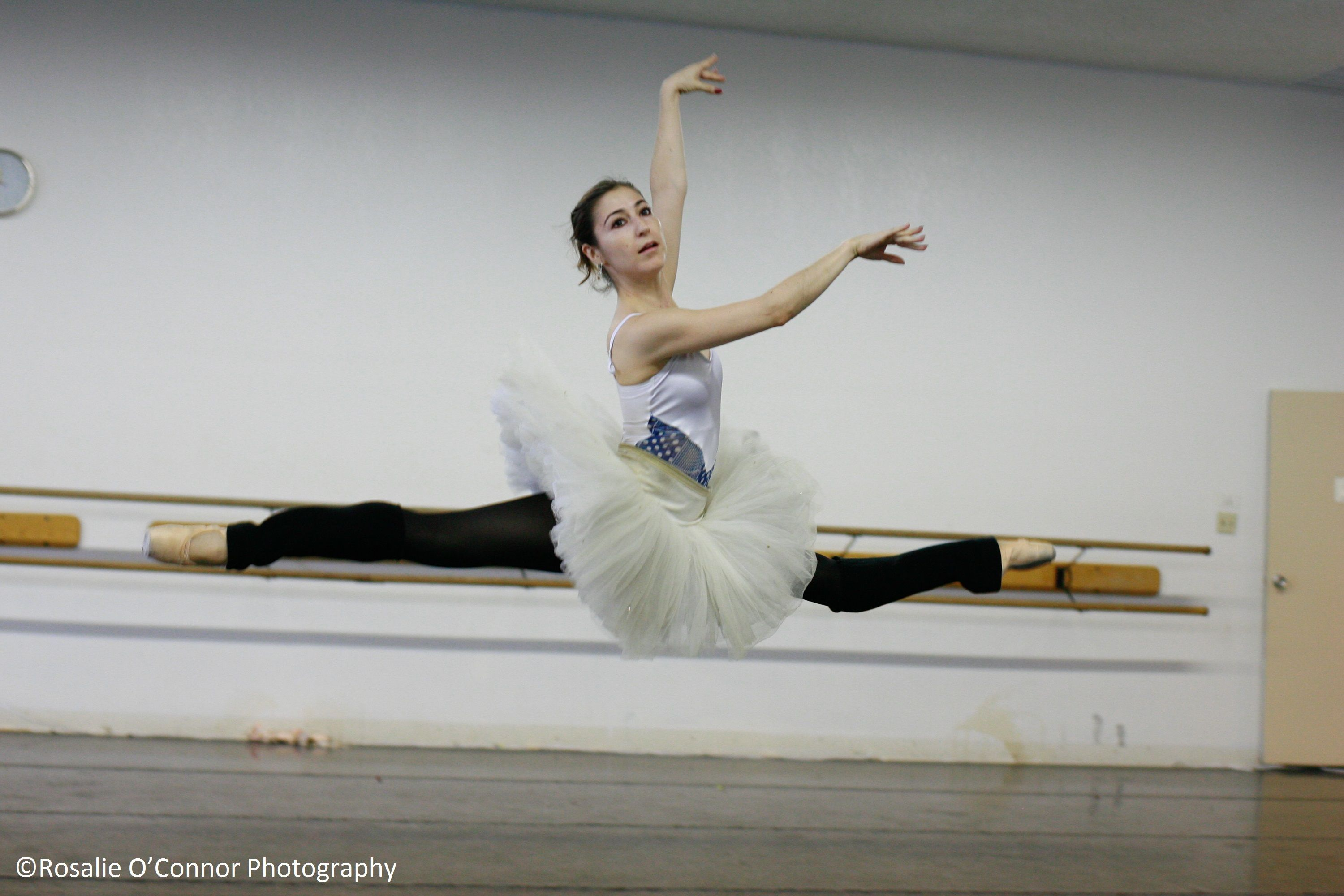 Uncategorized Funny Ballet grand ballet arizona dancer paola hartley photo by rosalie oconnor
