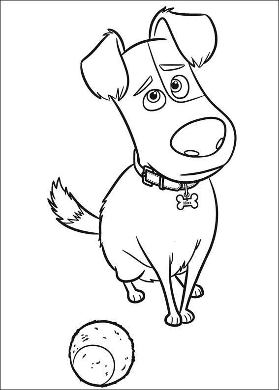 The Secret Life Of Pets Coloring Pages 7 Coloriage Comme Des Betes Dessin