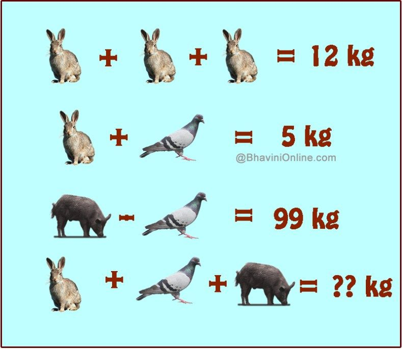 Fun Picture Riddle: What is the Sum of Weights of Rabbit, Bird and ...