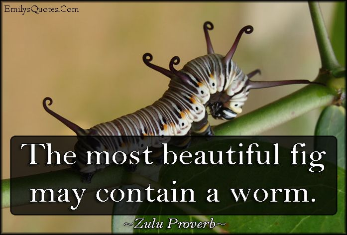 Happy Birthday Quotes In Zulu ~ The most beautiful fig may contain a worm inspirational words