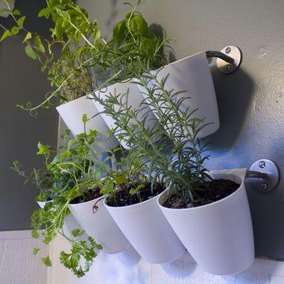 Hanging Kitchen Herb Garden | IKEA Hack | Via FlightsOfDelight.com